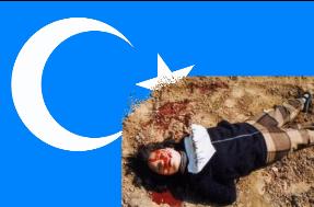 dogu-turkistan-soykirimi-bilgiagi-net